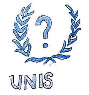 How Well Connected Are We to the UN?